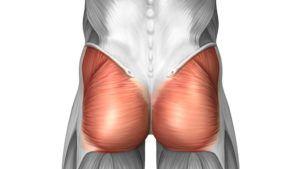 la importancia de los glúteos en el dolor de espalda